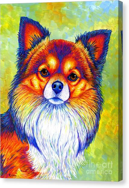 Colorful Long Haired Chihuahua Dog Canvas Print