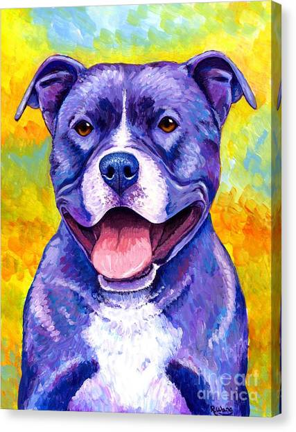 Colorful Pitbull Terrier Dog Canvas Print