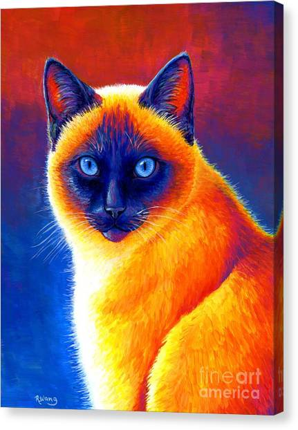 Jewel Of The Orient - Colorful Siamese Cat Canvas Print