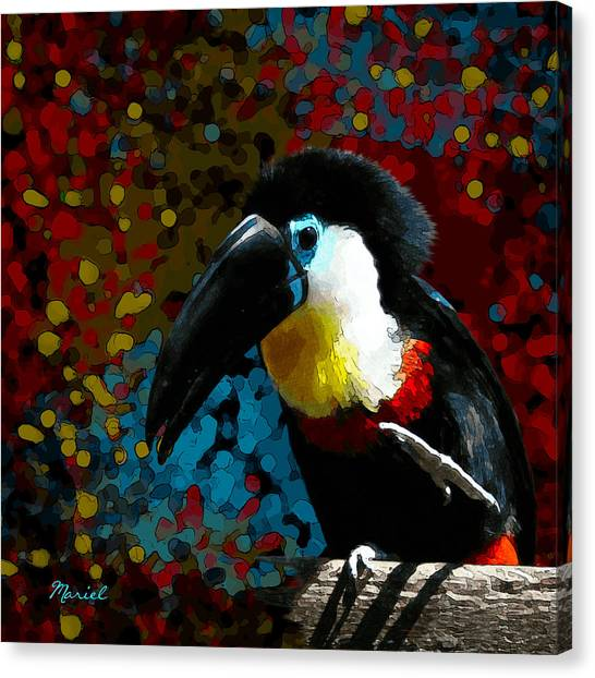Colorful Toucan Canvas Print