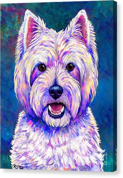 Colorful West Highland White Terrier Blue Background Canvas Print