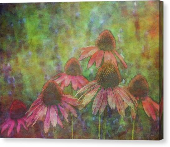 Coneflowers Among The Lavender 1667 Idp_2 Canvas Print