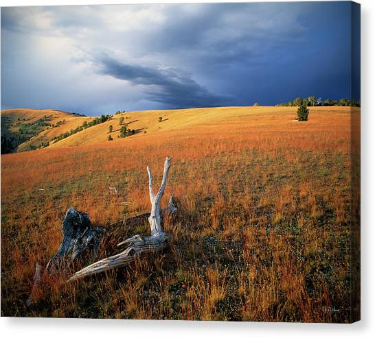 Continental Divide Canvas Print by Leland D Howard