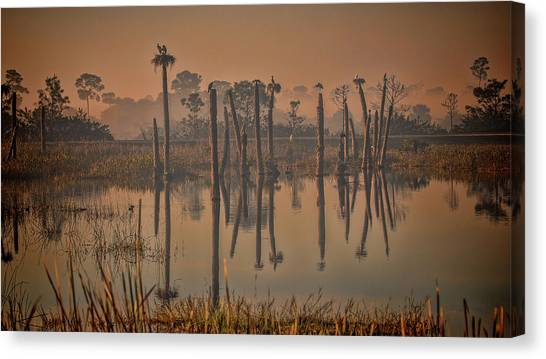 Cool Day At Viera Wetlands Canvas Print