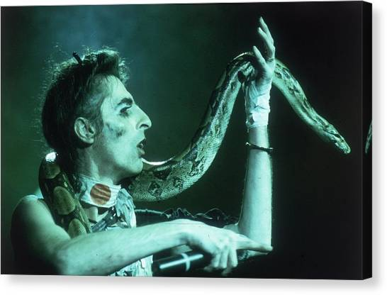 Alice Cooper Canvas Print - Coopers Boa by Keystone