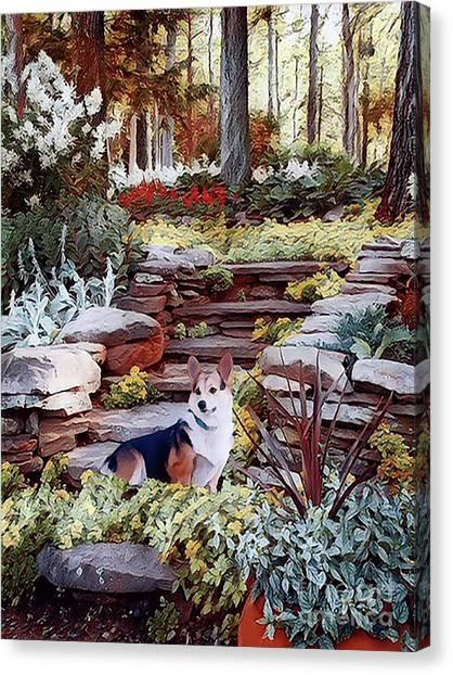 Corgi At Highgarden Canvas Print