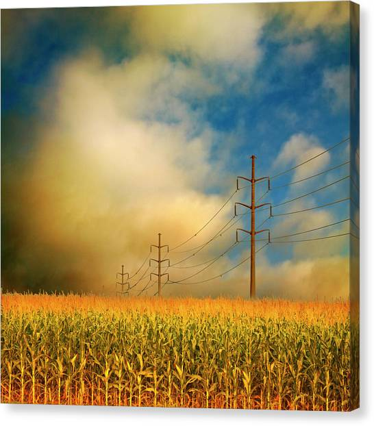 Corn Field At Sunrise Canvas Print