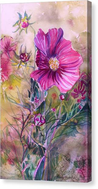 Canvas Print - Cosmos For Kristina by Mindy Newman