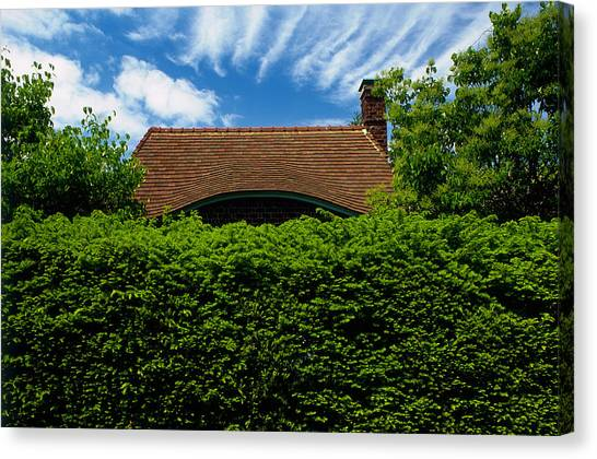 Lilac Bush Canvas Print - Cottage Behind Yew Taxus Baccata Hedge by Richard Felber