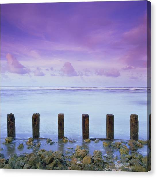 Cotton Candy Skies Over The Sea Canvas Print