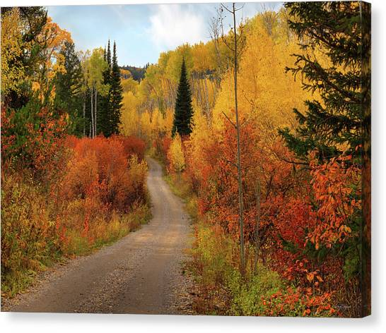 Country Road In Autumn Canvas Print by Leland D Howard