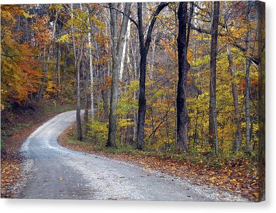 Canvas Print featuring the photograph Country Road On Fall Day by Mike Murdock