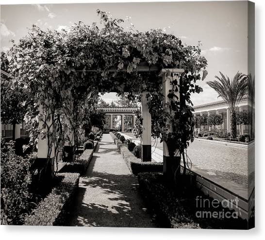 J Paul Getty Canvas Print - Courtyard Landscape Bw Getty Villa  by Chuck Kuhn