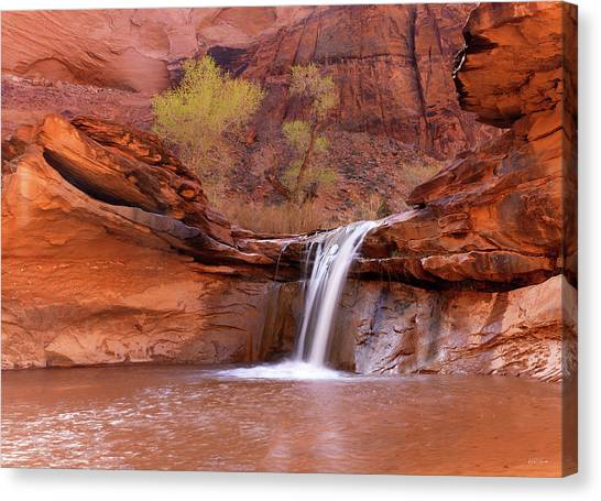 Coyote Gulch Waterfall Canvas Print by Leland D Howard