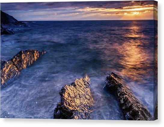 Crackington Haven Beach, Cornwall Canvas Print by David Ross