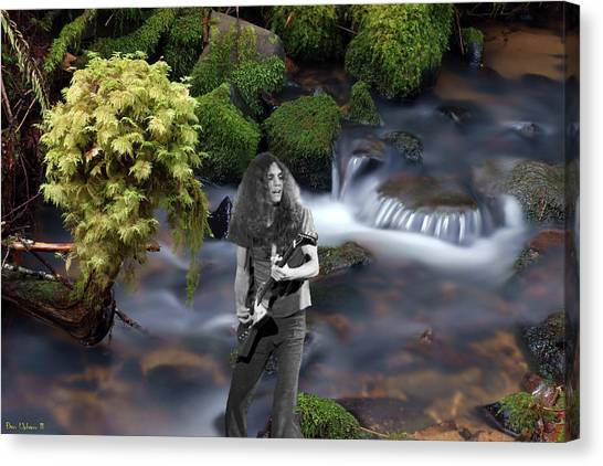 Canvas Print featuring the photograph Creek Music #1 by Ben Upham