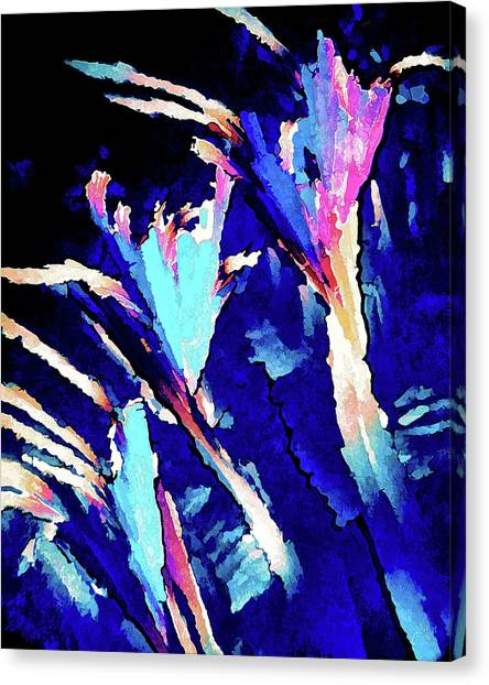 Crystal C Abstract Canvas Print