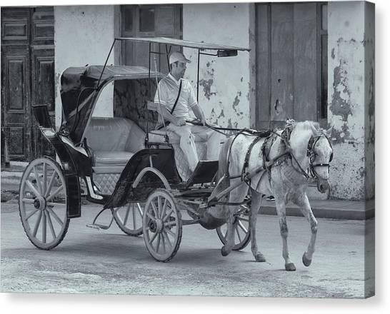Cuban Horse Taxi Canvas Print