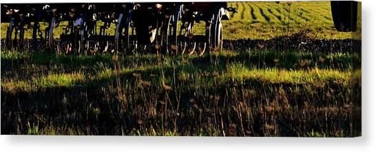 Canvas Print featuring the photograph Cultivator At Sunrise by Jerry Sodorff