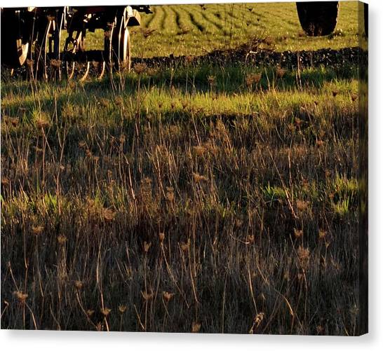 Canvas Print featuring the photograph Cultivator Winter Rest by Jerry Sodorff