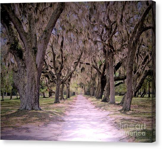 Cumberland Fairytale Lane Canvas Print