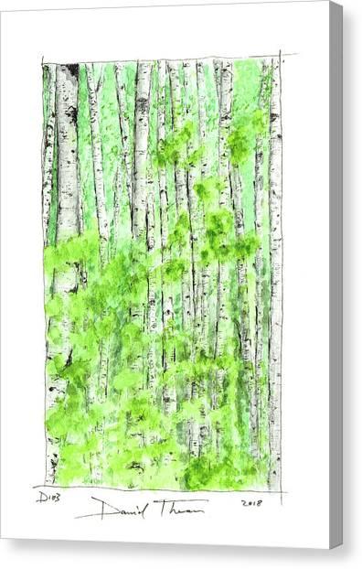 D103 Canvas Print