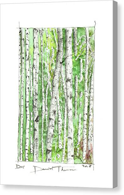 D105 Canvas Print