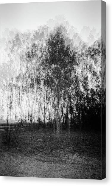 D1984p Canvas Print