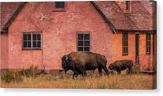 Daddy's Home Canvas Print