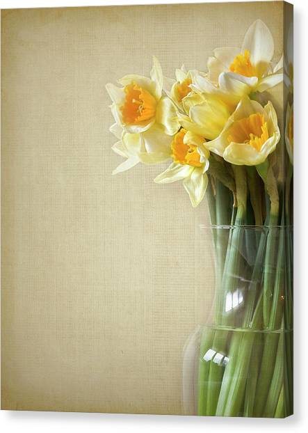 Vase Of Flowers Canvas Print - Daffodils In Vase by Jody Trappe Photography