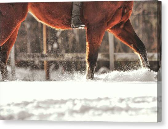 Dashing Through The Snow Canvas Print by JAMART Photography