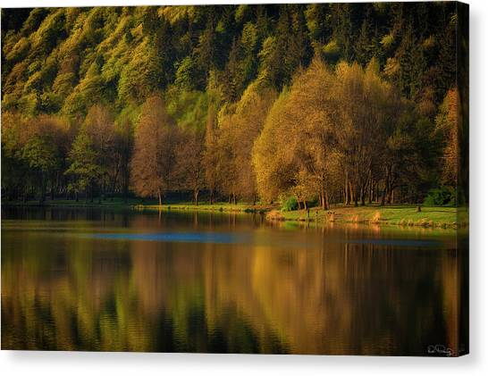 Dawn's Light Along A Lakes Shore Canvas Print