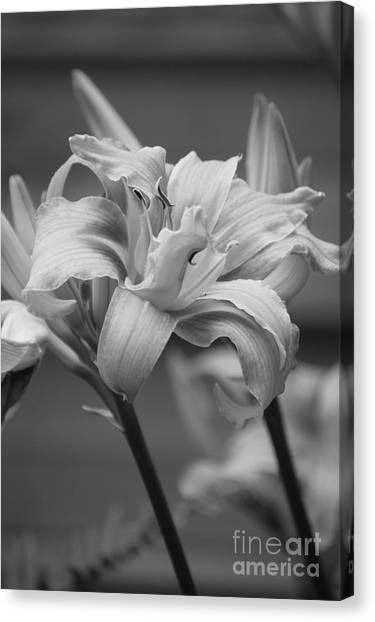 Canvas Print featuring the photograph Day Lily Yellow Filter by Jeni Gray