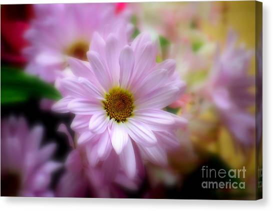 Canvas Print featuring the photograph Day's Eye by Patti Whitten