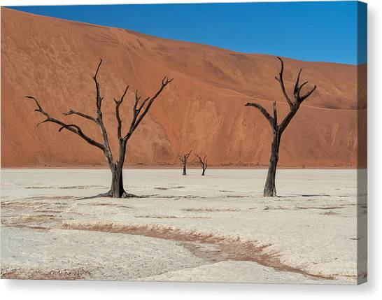 Canvas Print featuring the photograph Deadvlei Namibia  by Rand
