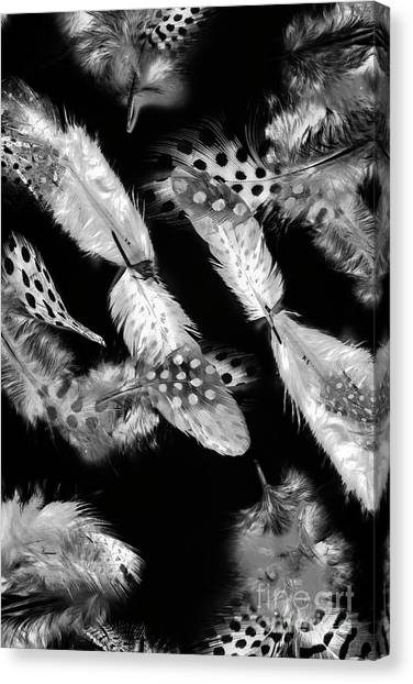 Avian Canvas Print - Decorated In Black And White by Jorgo Photography - Wall Art Gallery