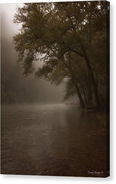 Depth Of Solitude  Canvas Print