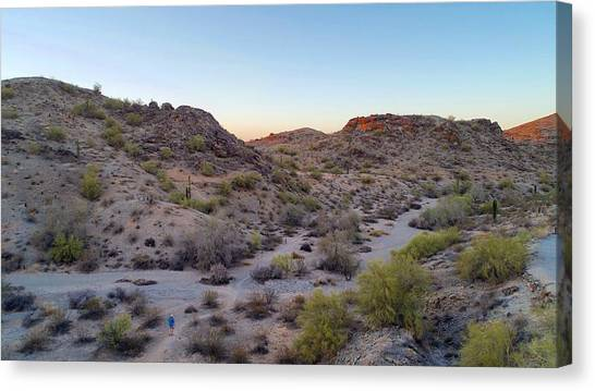 Desert Canyon Canvas Print