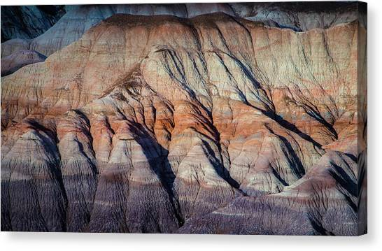 Petrified Forest Canvas Print - Desert  In Abstract by Joseph Smith