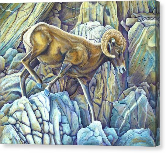 Desert Ram Canvas Print