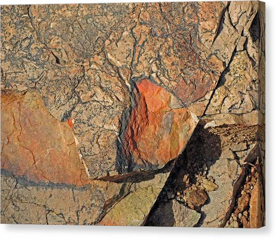 Canvas Print featuring the photograph Details Along The Path 2 by Lynda Lehmann
