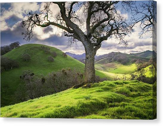 Diablo Winter Hills Canvas Print by Vincent James