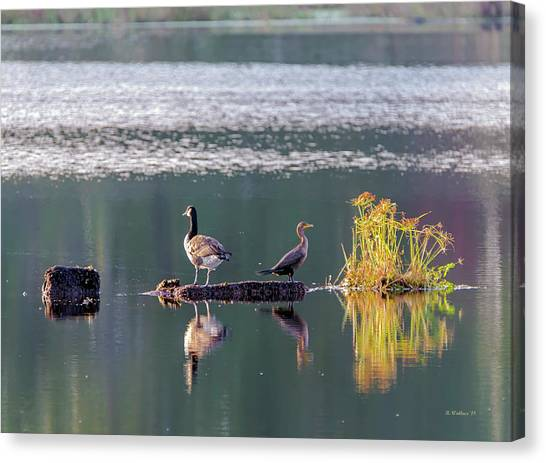 Coexist Canvas Print - Different But Sharing The Same Earth by Brian Wallace