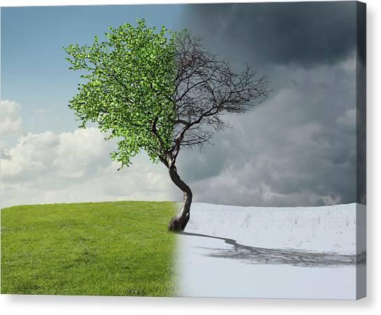 Digital Illustration Of Half Winter Canvas Print