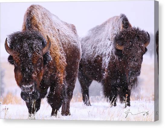 Winter Canvas Print - Dimensions  by Kadek Susanto