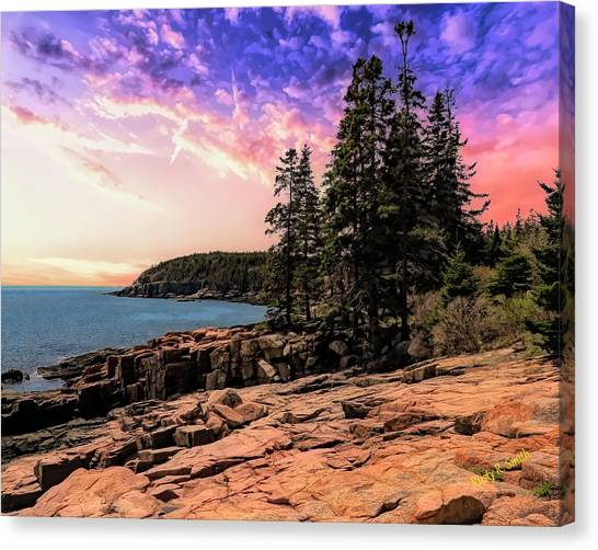 Distant View Of Otter Cliffs,acadia National Park,maine. Canvas Print