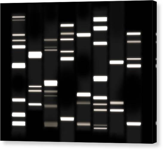 Molecule Canvas Print - Dna Art White On Black by Michael Tompsett