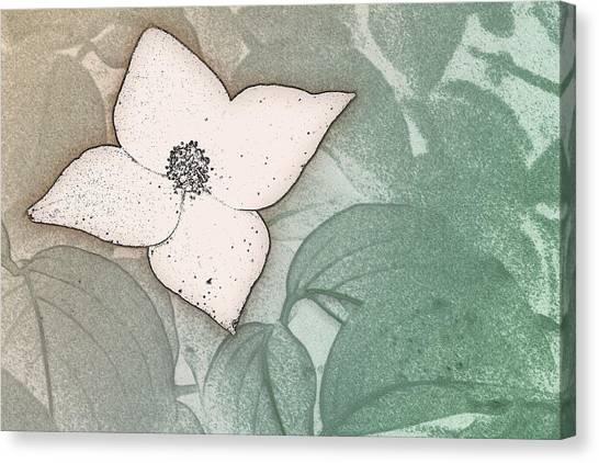 Dogwood Flower Stencil On Sandstone Canvas Print