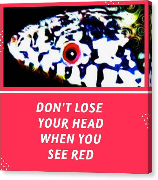 Canvas Print featuring the photograph Don't Lose Your Head When You See Red by Judy Kennedy