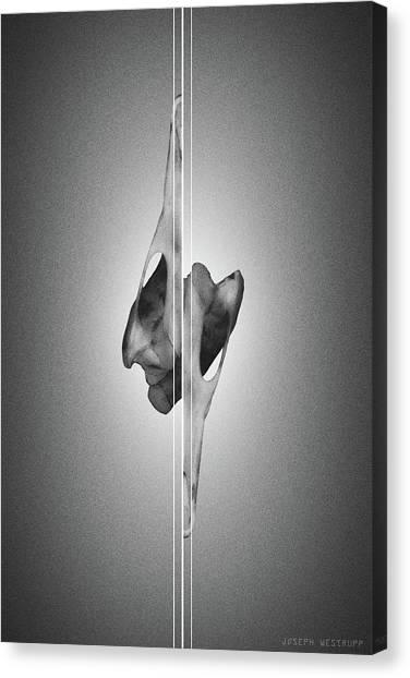 Dormiveglia Black - Surreal Abstract Bird Skull And Lines Canvas Print